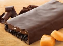 Double-Chocolate-Caramel-Bar_L